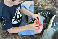 39 (Mimimidi) Tags: scouts clickescoteiro alcateia kids