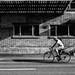 Ciclista a Zurigo