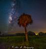 Night Sky in South Florida (The Happy Traveller) Tags: milkywaygalaxy nightscenery nightsky starrysky starrynight southflorida bigcypressnationalpreserve