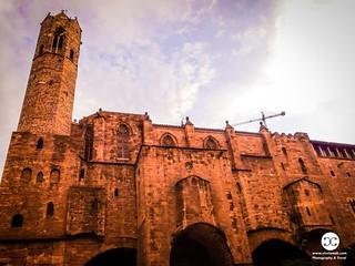 Roman Walls in Barcelona Spain-P1005