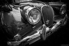 1958 Jaguar XK150 [Explored] ©2018 Steven Karp (kartofish) Tags: jaguar vintage 1958 xk150 fuji fujifilm newtown autoshow xt1 british automobile monochrome blackandwhite chrome grillemblem headlight grill