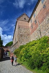 Akershus Fortress (Thomas Roland) Tags: akershus cannon kanon fortress fortification castle slot bastion festning medieval outdoor europe europa travel rejse holiday tourist tourism sommer summer norway norge noreg oslo city stadt