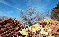 Decay (Elvis L.) Tags: roof ruin decay tile tree sky skročini zadar dalmatia croatia ruins stone