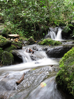 Quebrada Quindiana