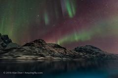 Aurora from Lofoten Islands #1 (Amazing Sky Photography) Tags: auroraborealis northernlights lofotenislands norway ship coast mountains msnordnorge hurtigruten capella cassiopeia alberta canada