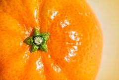 Pedicil (docoverachiever) Tags: citrus star orange fruit food macro stem pedicil