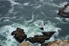 Point Reyes Light Station (LauraJSwindle) Tags: water ocean californiacoast coast waterscape rocks cliff waves norcal northerncalifornia pointreyeslightstation pointreyesnationalseashore fall2016 nature naturephotography wantaghfairfield nyca usa