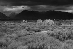 Grand Teton National Park (Silver Sands Safari) Tags: tetons