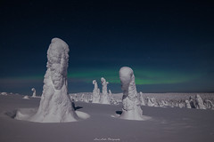 Winter Auroras (laurilehtophotography) Tags: 2018 posio riisitunturi talvi suomi finland landscape night winter cold snow ice trees mountain auroras auroraborealis northernlights moon stars nature nikon d610 samyang 14mm longexposure amazing europe lapland