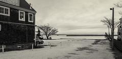 Cape Cod Bay--Afternoon (PAJ880) Tags: cape cod bay february pm light shadow provincetown ma offseason bw mono