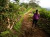 Spring Hike (lunkerbuster808) Tags: hiking kauai lumix green island hawaii women active walk gx85 kit 1232