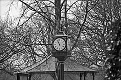 East Park Clock Black and White (brianarchie65) Tags: eastpark eastyorkshire geese garden trees clock restaurant grass unlimitedphotos monochrome blackandwhite blackandwhitephotos blackandwhitephoto ngc flickr flickrunofficial flickruk ukflickr flickrcentral canoneos600d geotagged brianarchie65