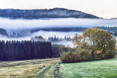 Time to go out (*Capture the Moment*) Tags: 2017 autumn clouds fotowalk herbst himmel panoshot panoramablick panoramaview sky sonne sonya7m2 sonya7mii sonya7mark2 sonya7ii sonyfe2470mmf4zaoss sonyilce7m2 sun wetter wolken
