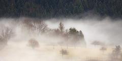 La nappe de brouillard (mrieffly) Tags: brumes brouillard canoneos50d