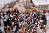 Carnaval de Battenheim 2018 (ComputerHotline) Tags: personnehumaine portrait famille enfant enfants âgesmélangés adulte masculin homme monsieur féminin femme dame carnaval carnival chardedéfilé paradefloat decoration décorationdefête multicolored multicolore cultures celebration festivité confetti carnivalcelebrationevent carnavalréjouissances artscultureandentertainment artscultureetspectacles disguise accessoirededéguisement fêteforaine travelingcarnival prisedevueenextérieur outdoors imagesaisiesurlevif candid child childs enfance childhood filles girls fille girl garcons boys garcon boy garçons garçon man woman groupedepersonnes groupofpeople battenheim grandest france fra