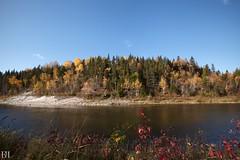 Gaspésie Landscape (NeoNature) Tags: canon nature landscape paysage quebec canada pines arbre sun day fall autumn automne photography photographie waterscape riviere river matane