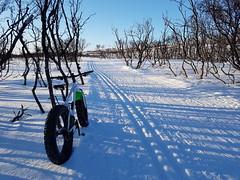 Back on track:-) (GeirB,) Tags: varanger vadsø vadso vintersykling mars østfinnmark finnmark friskifinnmark fatbike fun play uteliv swix sweethelmet shimano xt gps garmin winterwonderland winter training trail bikelife craft 26x48 surly gekkobikes 70north arctic
