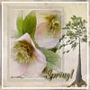 Spring! (Cheryl Razmus) Tags: awake photoshop digitalart digitalmanipulation sketchandwatercolorfilters