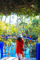 Jardin Majorelle   Marrakech (vincent.limkimkeong) Tags: marrakech morocco travel tree garden africa fujiprovia100f