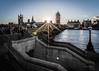 _C9Q6627-2-HDR-1 (rodwey2004) Tags: streetphotography london landmark westminsterbridge sunset sunshine bigbenlandscape housesofparliament architecture iconic southbank sunrays uk