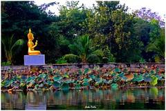you only lose….. (Jinky Dabon) Tags: canoneos1200d buddhism goldenbuddha kanchanaburi cavetemple temple religion buddhist buddha