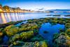 PlayaSanLorenzo (ignaciofedz) Tags: playasanlorenzo gijón xixón asturias atardecer sunset sea marcantabrico rocas musgo largaexposición