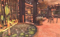 fish for a compliment (Decorizing) Tags: fish fountain jian pets lb trees frields bar