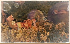 minamikaze180308-1 (minamikaze2010) Tags: tableauvivant thearcadegacha curemore uniform epic lepoppycock tlc bubble littlebranch {anc} halfdeer forest soap fantasy