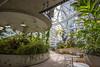 Inside the Amazon Spheres (Ashlyn G) Tags: indoors amazon interiordesign architecture seattle canon6d
