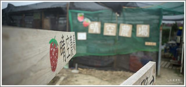 善化草莓 來去晴空農場找無農藥栽種的草莓 (34)