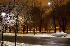 REDOUX - MILD TIME (BLEUnord) Tags: verglas lumières lampadaires lights arbres trees rue street février february hiver winter glace ice freeze température weather météo montréal québec canada
