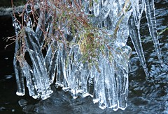 Icicles! ('cosmicgirl1960' NEW CANON CAMERA) Tags: icicles cold frozen ice dartmoor water devon nature yabbadabbadoo