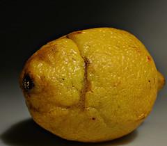 2018 Sydney: Imperfect Lemon (dominotic) Tags: 2018 food fruit imperfection macromonday citrusfruit lemon imperfectlemon yellow sydney australia