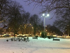 Le haut du parc sous la neige (Flikkersteph -5,000,000 views ,thank you!) Tags: night urbanlight winter snow trees park white lighteffect nature dark riga schaerbeek brussels belgium