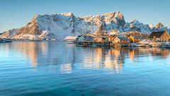 Morning light (Mika Laitinen) Tags: canon5dmarkiv europe lofoten norway sakrisøy scandinavia colorful daybreak landscape mountain nature outdoors sea serene shore sky snow sunrise water winter nordland no