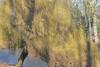 El Parque de Josaphat (Erasmusenflandes) Tags: bruselas flandes bélgica parque naturaleza verde