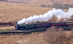 60163 tornado pulling away from moorgates. (springers1) Tags: 60163 tornado steam vintage heritage nymr moorgates railway