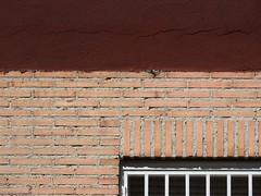 Verano en Madrid [EXPLORED] (The Shy Photographer (Timido)) Tags: spain espana madrid city capital europe europa shyish