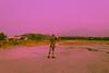 _MG_5243 (playwhyyza) Tags: purple thai kissx5 600d t3i travel canon ไทย เที่ยว ท่องเที่ยว ชลบุรี chonburi