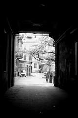 Lviv (entos13) Tags: lwów lwow lviv леви