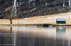 Famous (?) Norwegian winter scenery (FotoRoar2013) Tags: fotoroar2013 canon 5dmk3 water winter weather trees tre norway norwegen noruega norge norvegia nature natur norwege norvege atmosfære atmosphere atmosfera atmosphère frozen