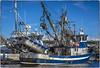 Built for Business (NoJuan) Tags: nikkor nikkorlens sonya7withmanualfocuslens sonya7ii mirrorless boat fishingboat