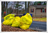After the Storm... (Timothy Valentine) Tags: 2018 trash 0318 home noreaster eastbridgewater massachusetts unitedstates us