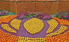 Corsos des fruits d'or (laurent KB) Tags: fruits menton provencealpescôtedazur corso citron orange fêteducitron