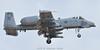 A-10C 81-0988/DM 354th FS/ 355th FW (C.Dover) Tags: davismonthanafb warthog usaf bulldogs 355thfw 810988dm 354thfs a10c fairchildrepublic thunderboltii 810988