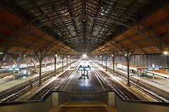 Wer zu spät kommt, steht alleine da (Lilongwe2007) Tags: lübeck hauptbahnhof eisenbahn verkehr deutschland schleswig holstein bahn züge gleise symmetrie halle innenarchitektur architektur bahnsteig
