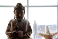 One man practicing kindness in the wilderness (Andrew 62) Tags: buddha starfish crystal window snow