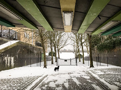 Underpass (marktmcn) Tags: wintry underpass pedestrian route russia dock passage snow snowy walls under road lights pathway trees dog