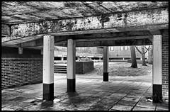 Concrete Jungle. (curly42) Tags: buildings architecture concrete pillars concretejungle 1960s structure monochrome blackwhite