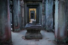 The Divine (preze) Tags: preahkhan lingam yoni angkor siemreapprovince kambodscha cambodia südostasien allerheiligstes heilig tree templeruin zentrum center tempelruine sandstein ruinen göttlich divine sacred holy